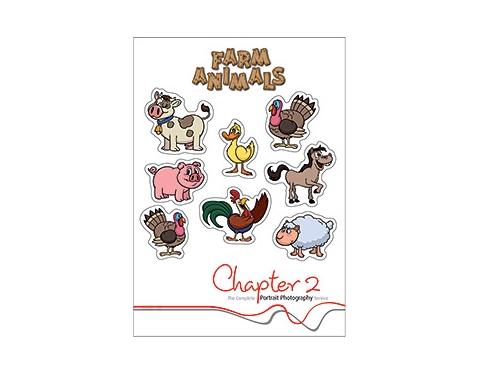 A6 Sticker Sheet
