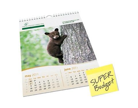 Economy Wall Calendar