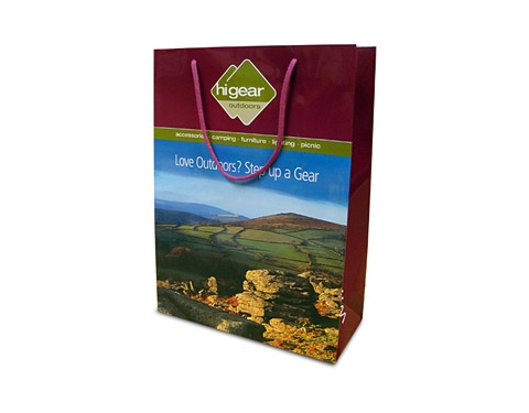 Sycamore Luxury Laminated Paper Bag