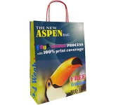 Aspen Forest Twist Handled Kraft Paper Lunch Bag  by Gopromotional - we get your brand noticed!