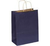 Holly A4 Coloured Twist Handled Kraft Paper Bag