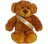 20cm Barney Bear With Ribbon Sash - Chestnut