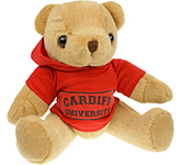 20cm Jointed Honey Bear With Hoodie