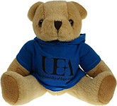 25cm Jointed Honey Bear With Hoodie
