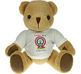 30cm Jointed Honey Bear With T-Shirt