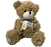 18cm Paw Bear With Ribbon Sash