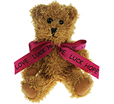 15cm Sparkie Bear With Bow