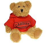 20cm Sparkie Bear With Hoodie