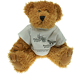 20cm Sparkie Bear With T-Shirt