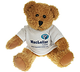 25cm Sparkie Bear With T-Shirt