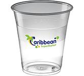Glastonbury Disposable Plastic Beer Glass - 300ml