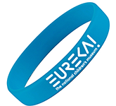 Express Silicone Wristbands - Printed