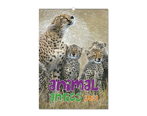 Animal Antics Wall Calendar