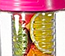 Fruit Infuser Water Bottles