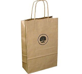 A4 Sustainable Kraft Twist Handled Paper Carrier Bag
