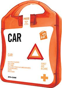 Car First Aid Survival Cases