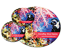 Round Hard Top Mouse Mat Coaster Sets  by Gopromotional - we get your brand noticed!